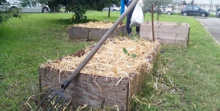 EcoSapone + AgriCultura = Produzione Arte e Cultura Open Source